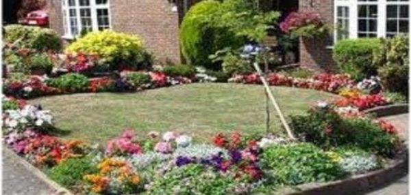 تنسيق حدائق حي المسفلة