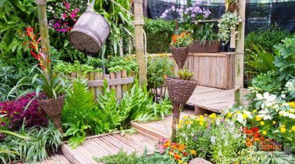 تنسيق حدائق حي السليمانية