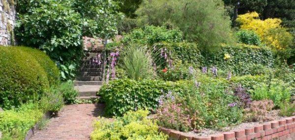 تنسيق حدائق حي الخالدية