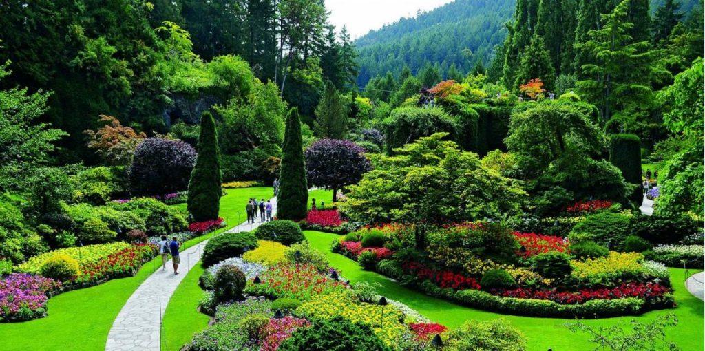 خدمة تصميم حدائق بمكة